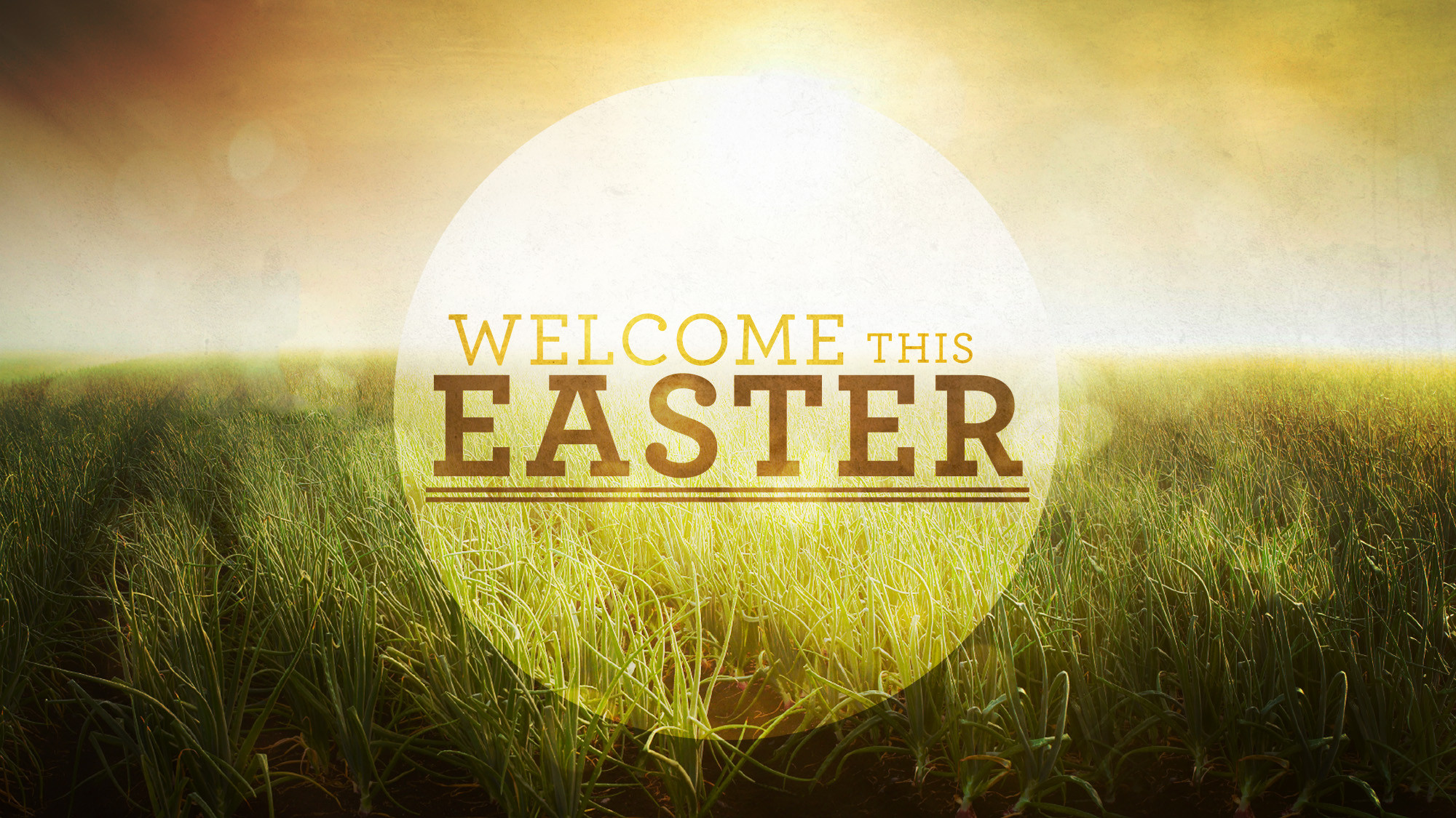 http://malabarbaptist.com/wp-content/uploads/2013/03/Welcome-This-Easter_wide_t_nv.jpg